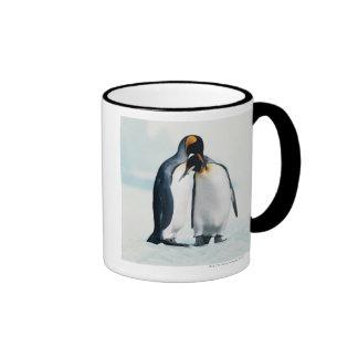 Dos pingüinos cariñosos taza de dos colores