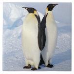 Dos pingüinos de emperador en la Antártida Azulejos Cerámicos