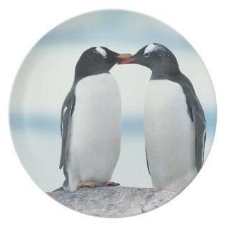 Dos pingüinos que tocan los picos platos para fiestas