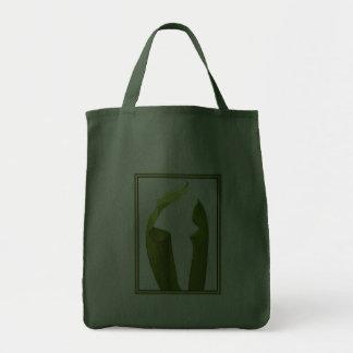 Dos plantas de jarra bolsas