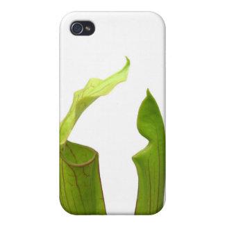 Dos plantas de jarra verdes iPhone 4 carcasa