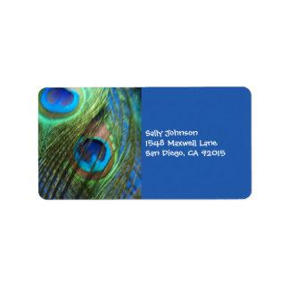 Dos plumas azules del pavo real etiquetas de dirección