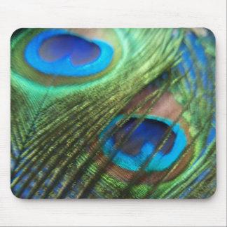 Dos plumas azules Mousepad del pavo real