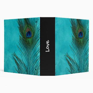 Dos plumas del pavo real de la aguamarina