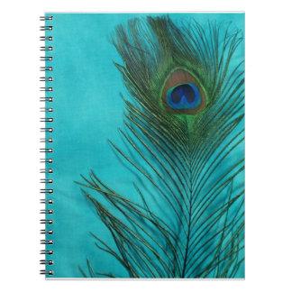 Dos plumas del pavo real de la aguamarina libretas espirales