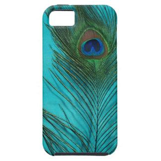 Dos plumas del pavo real de la aguamarina iPhone 5 cárcasas