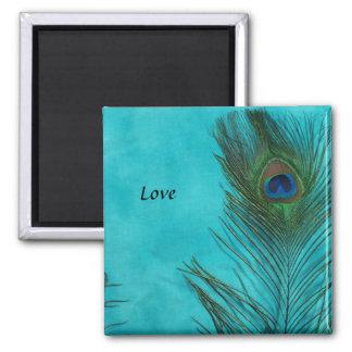 Dos plumas del pavo real de la aguamarina imán cuadrado