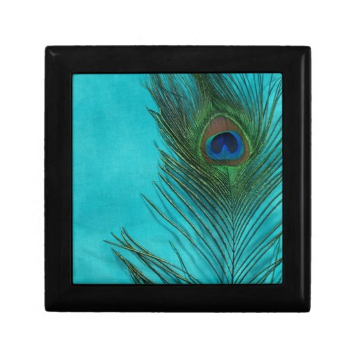 Dos plumas del pavo real de la aguamarina joyero cuadrado pequeño