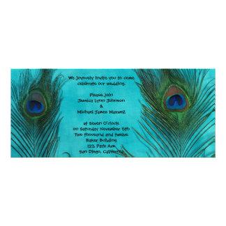 Dos plumas del pavo real de la aguamarina que casa