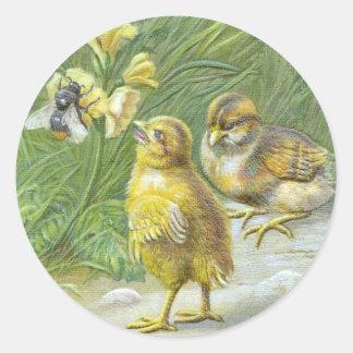 Dos polluelos y una tarjeta de pascua del vintage pegatina redonda