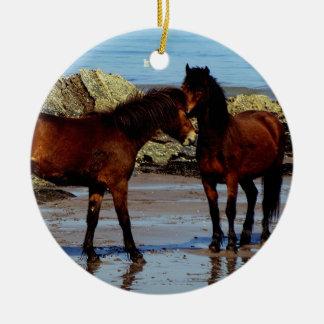 Dos potros del dartmoor en la playa alejada en adorno navideño redondo de cerámica
