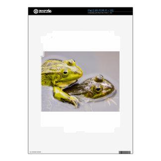 Dos ranas verdes de acoplamiento iPad 2 skin