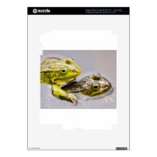 Dos ranas verdes de acoplamiento iPad 3 pegatinas skins