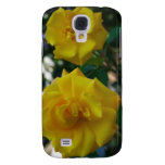 Dos rosas amarillos con las hojas - fotografía de