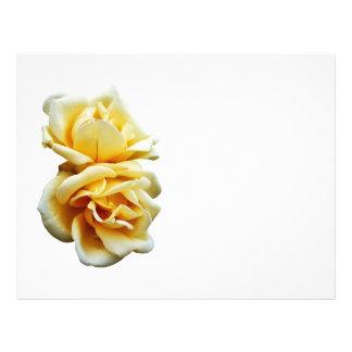 Dos rosas amarillos plantillas de membrete