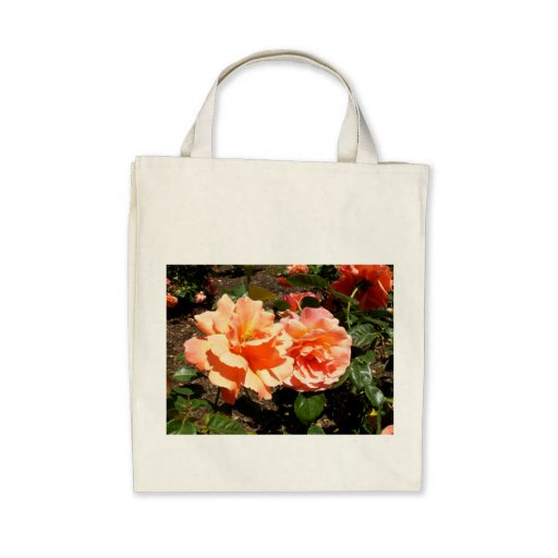 Dos rosas anaranjados bolsas