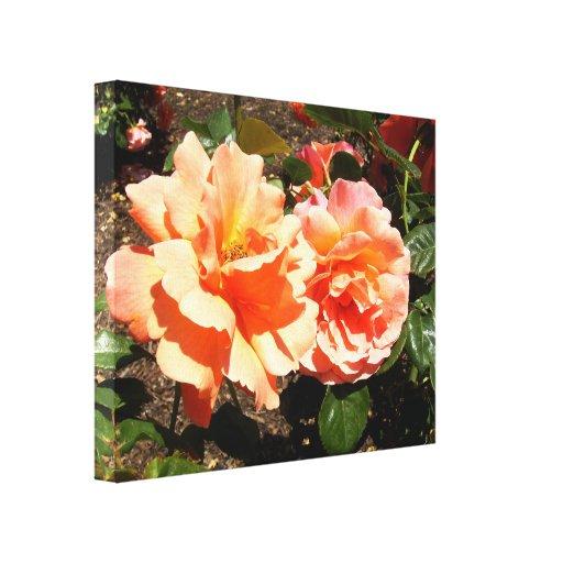Dos rosas anaranjados impresiones en lienzo estiradas