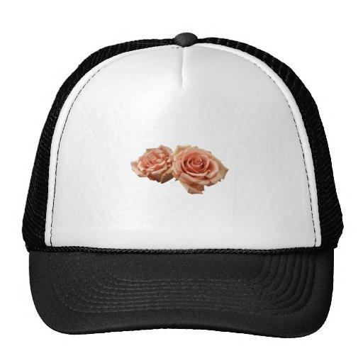 Dos rosas del melocotón gorra