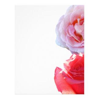 Dos rosas del tono plantillas de membrete