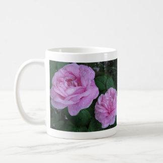 dos rosas rosados, tardan tiempo para oler el ro… taza básica blanca