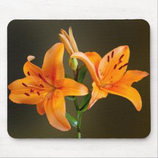 Dos tigre anaranjado Lillies y fotografía de los Mousepad