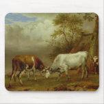 Dos toros con los cuernos bloqueados, 1653 tapete de ratones