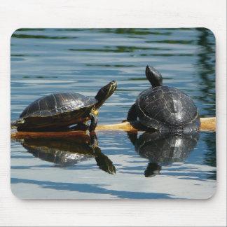 Dos tortugas en la barra de la tortuga tapete de raton