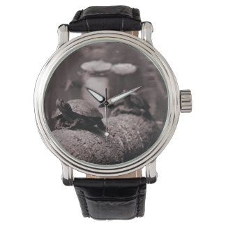 dos tortugas en sepia del tronco de la palma relojes de pulsera