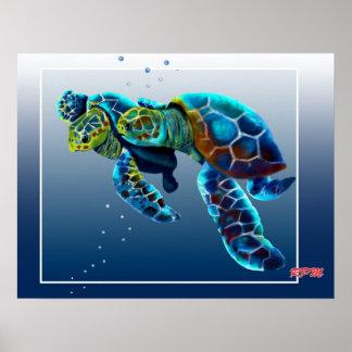 Dos tortugas póster