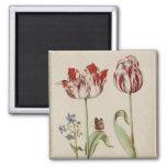 Dos tulipanes imán para frigorífico