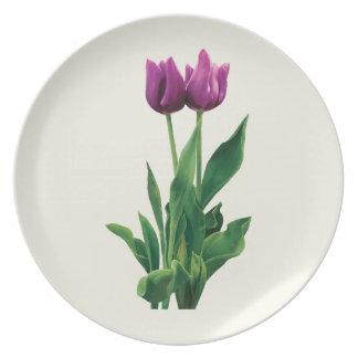 Dos tulipanes púrpuras platos de comidas