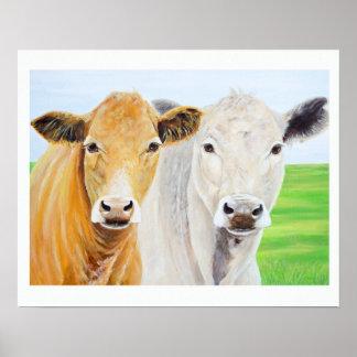 Dos vacas para Oklahoma 16 x impresión 20 Póster
