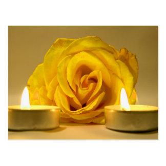 dos velas color de rosa de flor amarilla brillante tarjeta postal