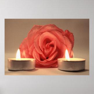 dos velas color de rosa de foto floral del rosa póster