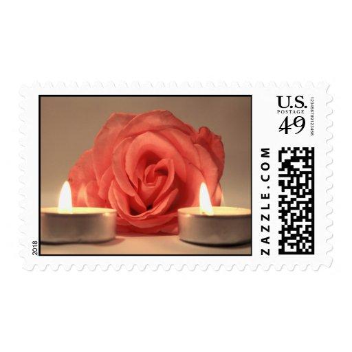 dos velas color de rosa de foto floral del rosa franqueo