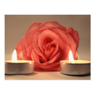 dos velas color de rosa de foto floral del rosa tarjeta postal