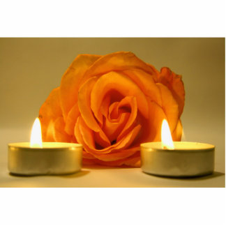 dos velas color de rosa de imagen floral amarillo- esculturas fotograficas
