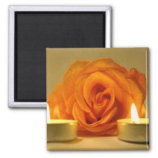 dos velas color de rosa de imagen floral amarillo- imán de frigorifico