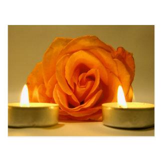 dos velas color de rosa de imagen floral postales