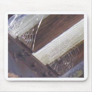 Dos Web de araña Tapetes De Ratones