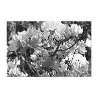 """""""Dos Wildflowers del tono """" Impresiones En Lona Estiradas"""