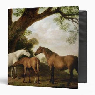 """Dos yeguas y un potro, 1774 de Shafto Carpeta 1 1/2"""""""