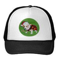 Dott Bark Humbug Trucker Hats