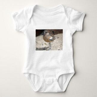Dotterel Baby Bodysuit