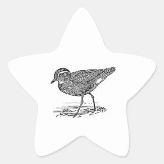 Dotterel Bird Line Art Star Sticker