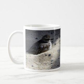 Dotterel Coffee Mug