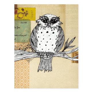Dotti the Owl 26 Postcard