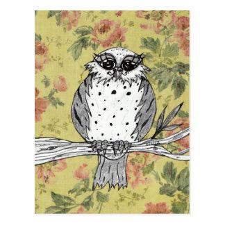 Dotti the Owl 27 Postcard