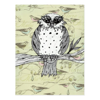 Dotti the Owl 33 Postcard