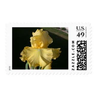Double Agent Postage Stamps